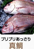 プリプリあっさり 真鯛